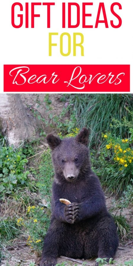 Gift Ideas for Bear Lovers
