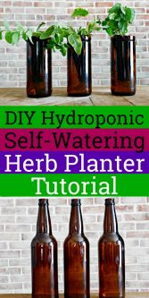 DIY Hydroponic Self-Watering Herb Planter Tutorial