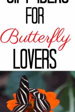 Butterfly Lovers Gift Ideas