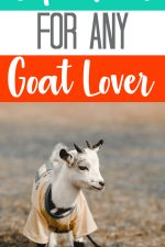 20 Gift Ideas for Goat Lovers