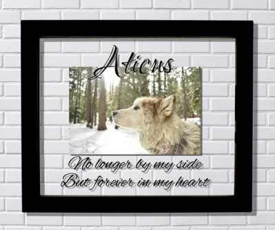 This Sympathy Gift Ideas for Loss of Dog is a thoughtful one.