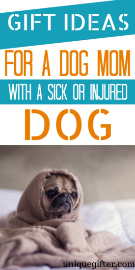 Gift Ideas For Dog Mom With Sick Or Injured Dog   Sick Dog   Injured Dog   Presents For Pet Owner   Unique Pet Owner Gifts   Gifts To Cheer Up Pet Owner With Sick Dog   #gifts #giftguide #dog #sickdog #presents
