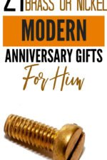 20 21st Brass or Nickel Modern Anniversary Gifts for Him