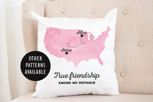 Gift ideas for internet friends include adorable pillows.