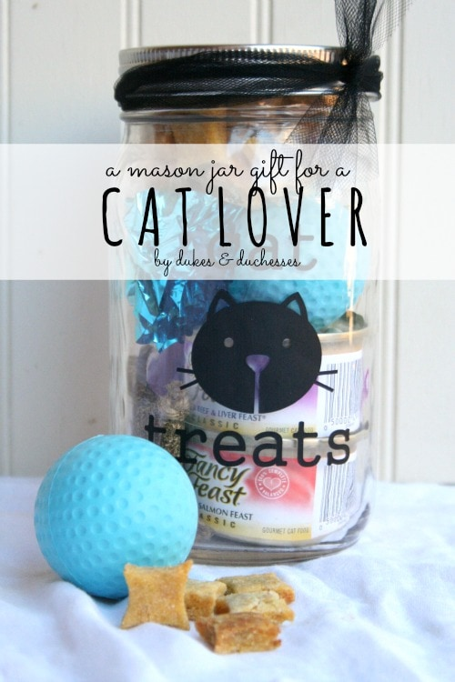 A Mason Jar Gift for a Cat Lover