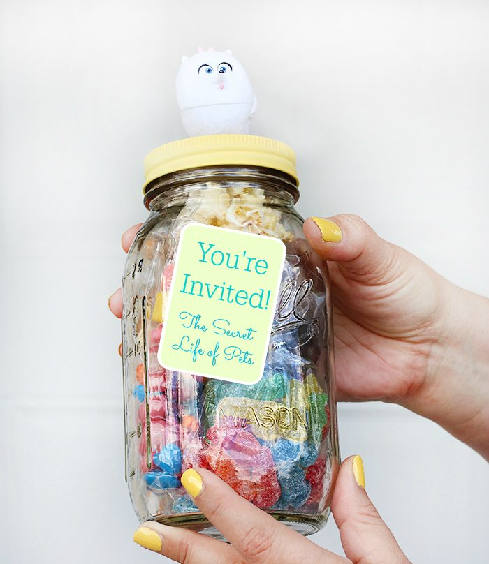 DIY Movie Invite in a Jar Inspired by The Secret Life of Pets
