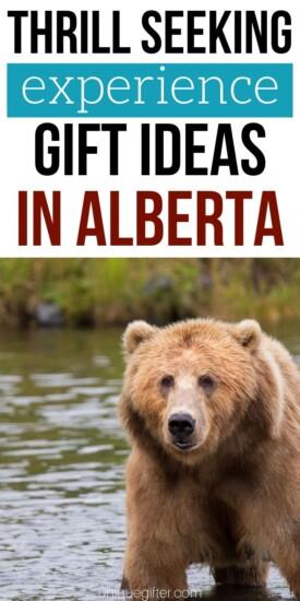 Adrenaline Junkie Experience Gifts in Alberta| Alberta Gifts | Unique Presents For Alberta | Experience Gifts In Alberta | #gifts #giftguide #alberta #unique #adventure #experience #uniquegifter