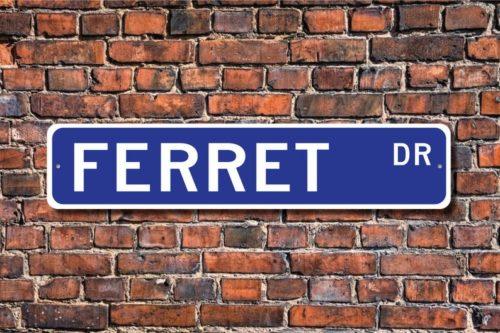 Ferret drive sign decor gift idea for Ferret lovers