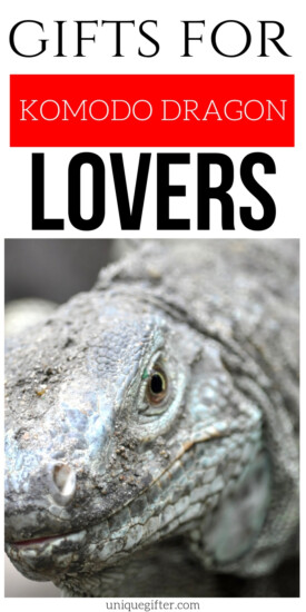 Best Gift Ideas for Komodo Dragon Lovers | Dragon Gifts | Presents For People Who Love Komodo Dragons | Interesting Komodo Dragon Gifts | #gifts #giftguide #presents #dragon #komodo #uniquegifts
