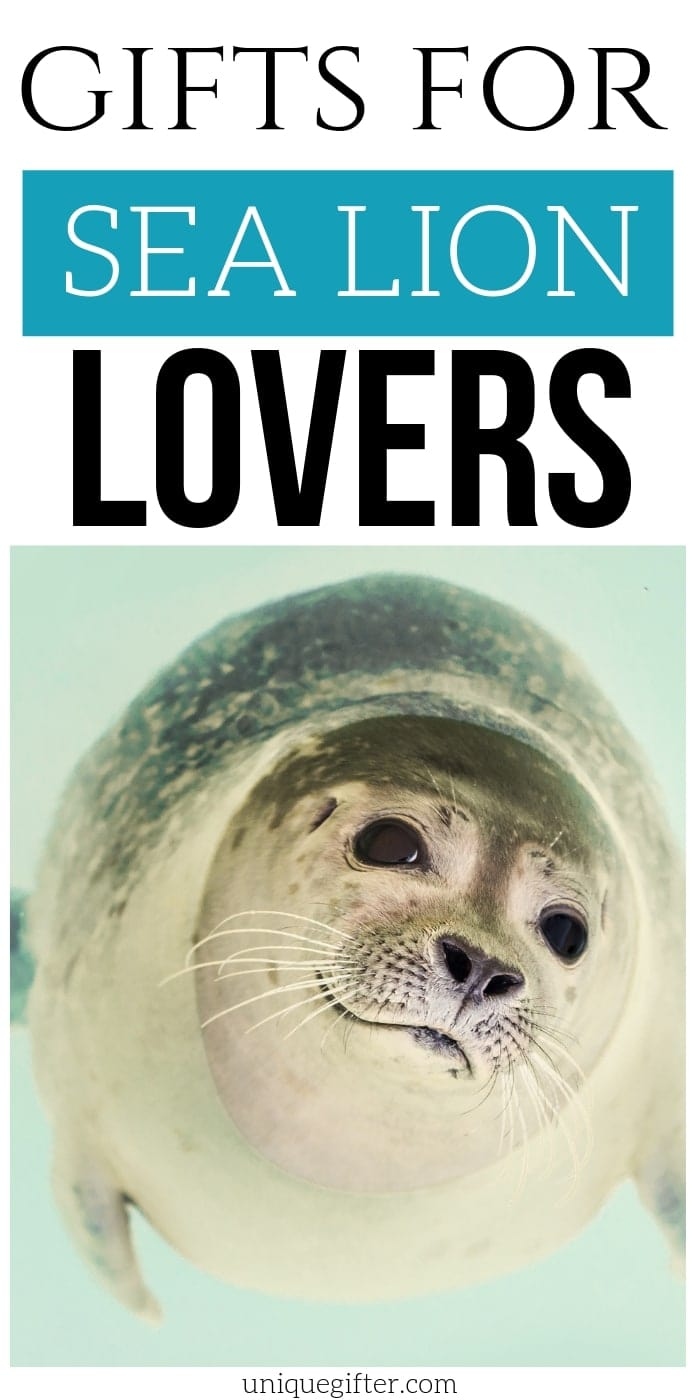 Best Gift Ideas for Sea Lion Lovers | Sea Lion Gift Ideas | Presents For People Who Love Sea Lions | Creative Sea Lion Presents | Adorable Presents For Sea Lion Lovers | #gifts #giftguide #presents #sealion #uniquegifter