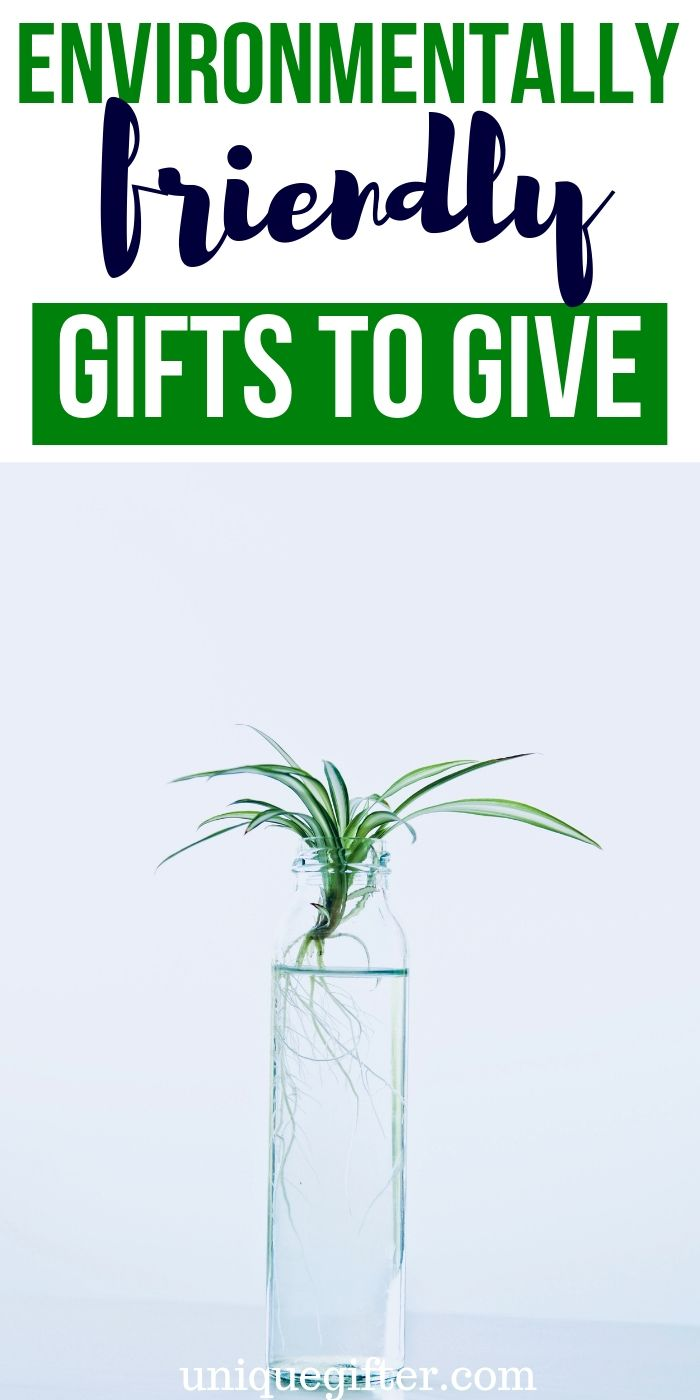 Best Environmentally Friendly Gift Ideas | Environmentally Friendly Presents | Creative Gifts That Are Good For The Environment | #gifts #giftguide #presents #environment #uniquegifter