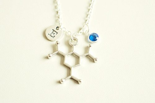 Trinitrotoluene Necklace with Initial Charm