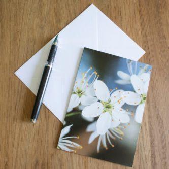 notecards stationary handwriting untensils gift idea