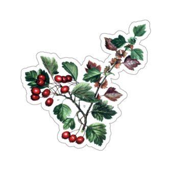 Hawthorne plant stickers gift idea