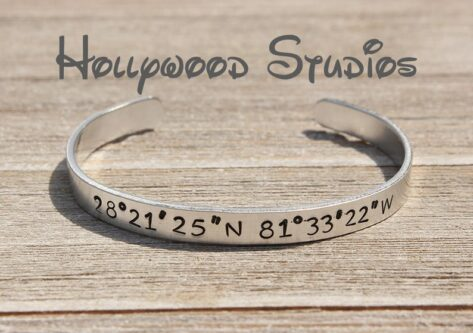Hollywood Studios geographic location coordinates wristlet