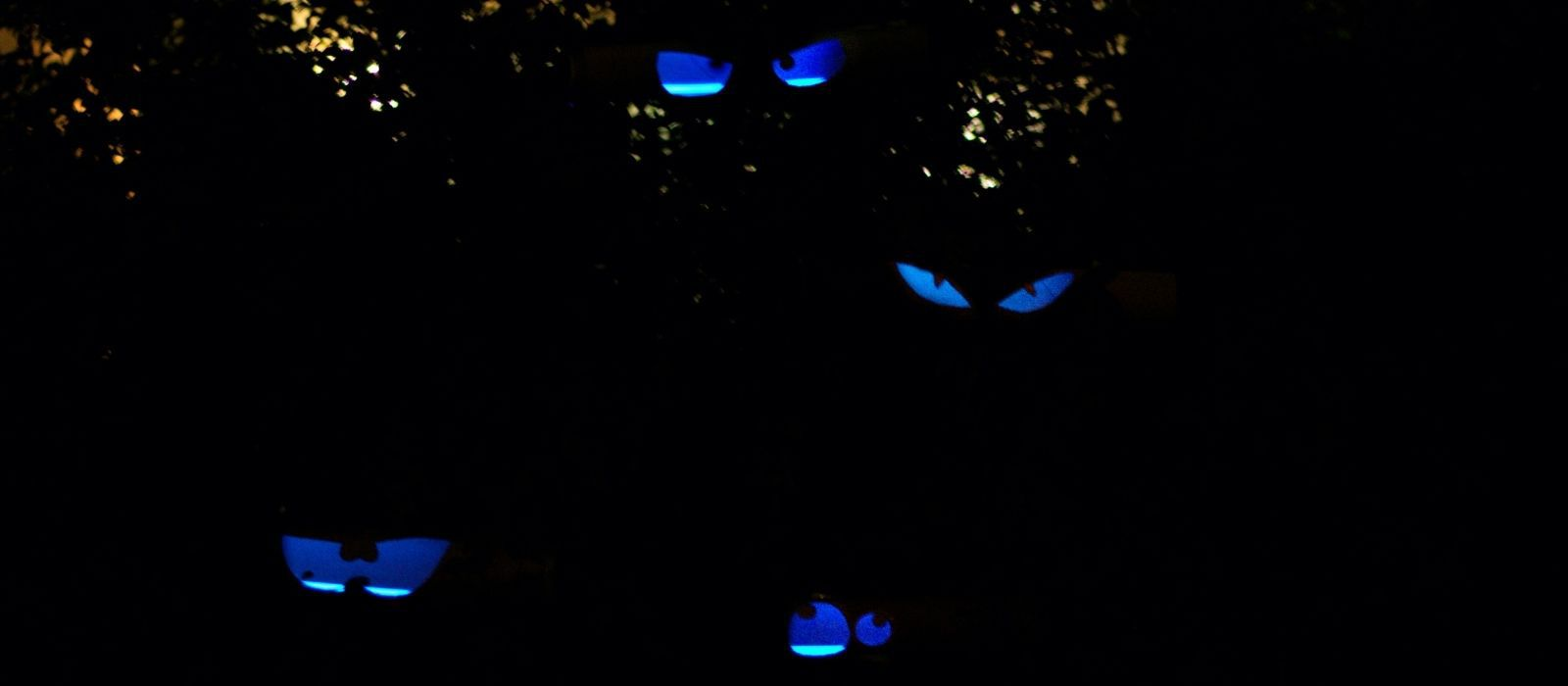DIY Glowing Halloween Eyes Craft for Kids