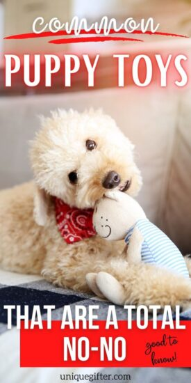 Puppy Toys | Common Things Dogs Shouldn't Chew on | Dog Chew Toys | What Toys are Safe for Dogs? | Safe Things for Dogs to Chew on | What Shouldn't Puppies Chew? | Is it Bad for Puppies to Use Chew Toys? | Safe Toys for Puppies | #puppy #dog #toy #pettoy #accessory #pets