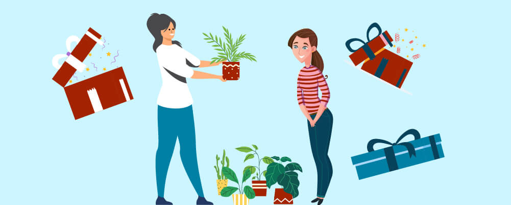 Give Plants Rather Than Flowers As A Gift